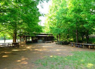 大谷戸公園